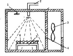 Modeling and Simulation of potato microwave drying kinetics