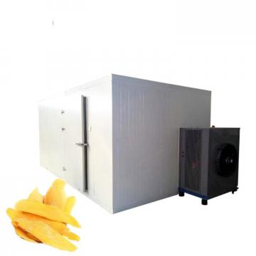 Vacuum Hypothermia Fruit Freeze Drying Machine